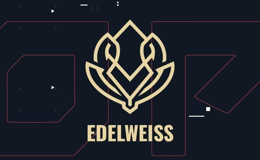 ¡Conversamos con las CEO de Edelweiss Esports! 12