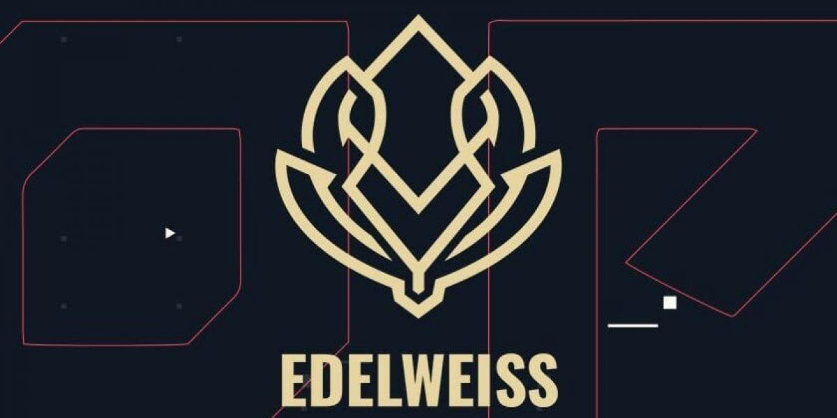 edelweiss-1-e1599860714250